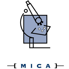 What Is Mica Microscopy Instruction Consultation